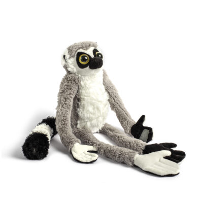 Bongoland Ringtailed Lemur