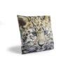 Cheetah Cub Cushion