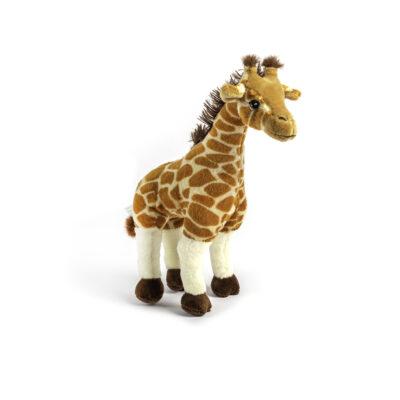 Giraffe Eco Small