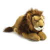 Lion Classic Laying