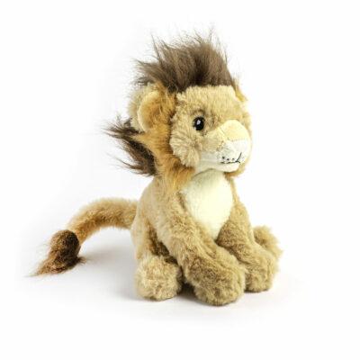 Lion Eco Small