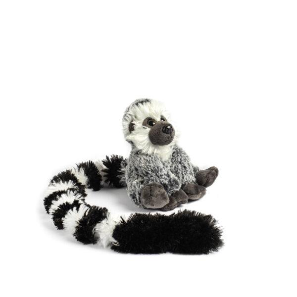 Long Tail Ringtailed Lemur